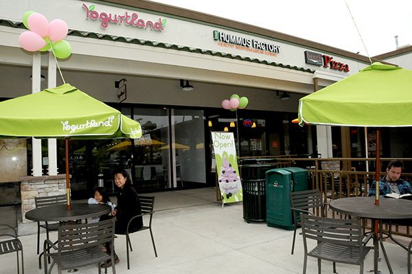 Yogurtland-1
